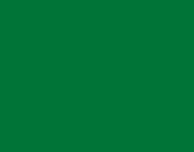 P.S.FILM Green, 0,50*25m