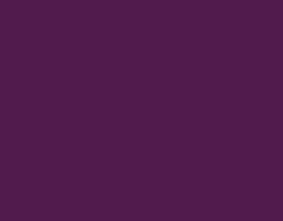 P.S.FILM Violet, 0,50*25m