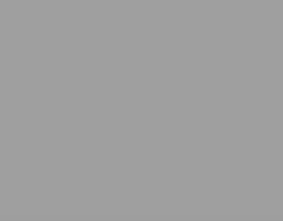P.S.FILM Grey, 0,50*25m