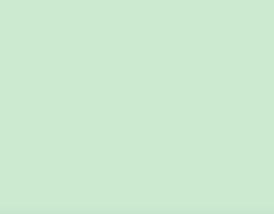 P.S.Stretch Mint, 0,50*25m