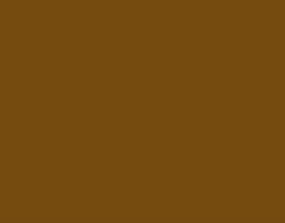 P.S.FILM Chocolate, 0,50*25m