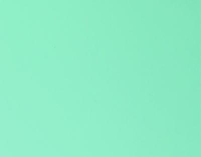 P.S.HI-5 Sweet Mint, 0,50*10m